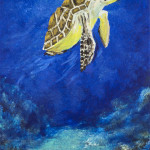 """Sea Turtle Blowing Bubbles"" Acrylic on Canvas thumbnail"